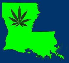 New Louisiana Medical Marijuana Laws Create Booming Potential Market for Doctors